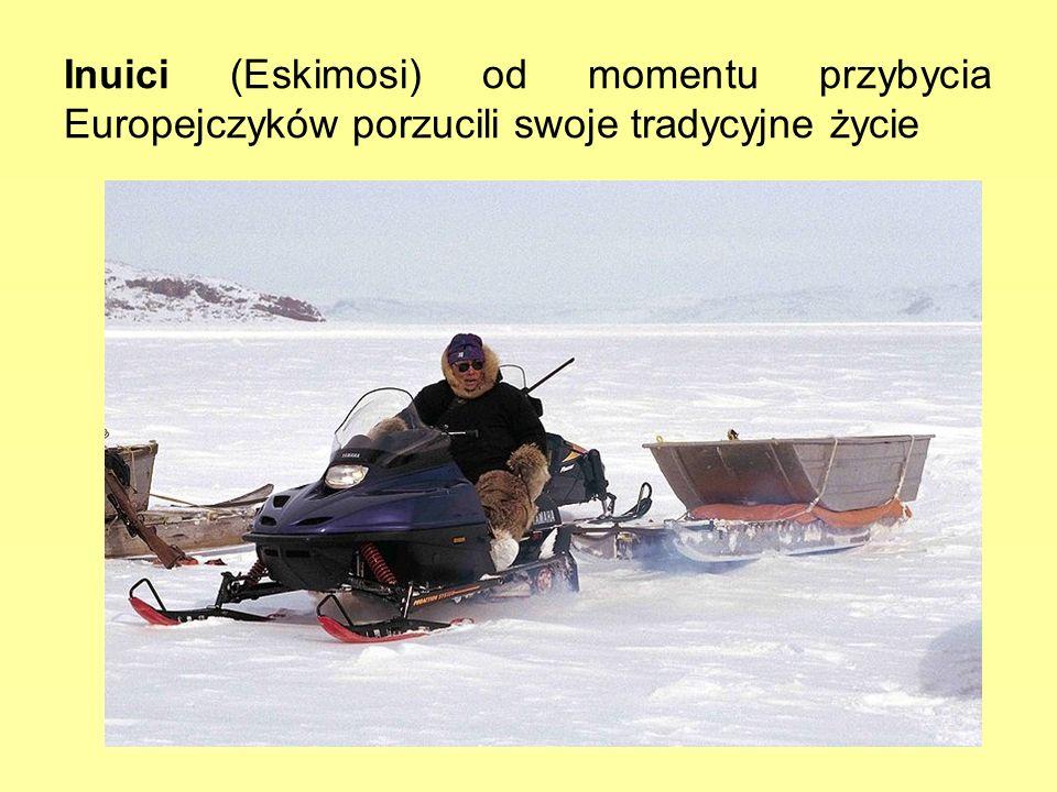 Inuici (Eskimosi) od momentu przybycia Europejczyków porzucili swoje tradycyjne życie