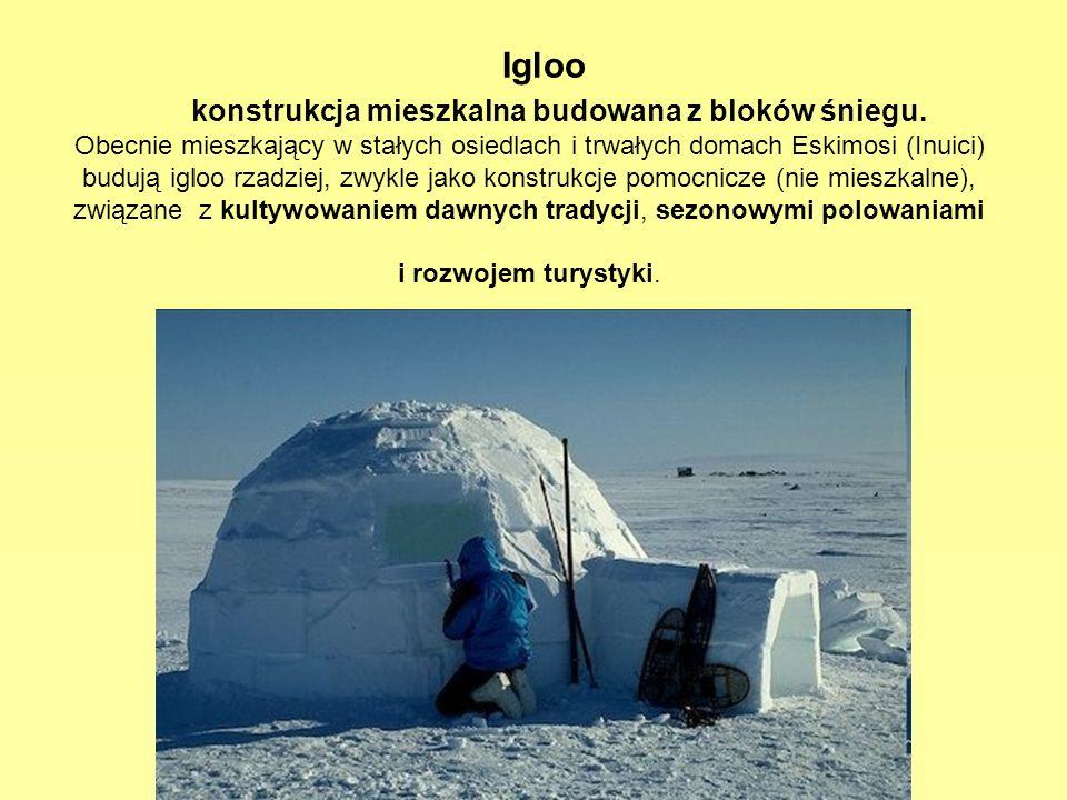 Igloo konstrukcja mieszkalna budowana z bloków śniegu. Obecnie mieszkający w stałych osiedlach i trwałych domach Eskimosi (Inuici) budują igloo rzadzi