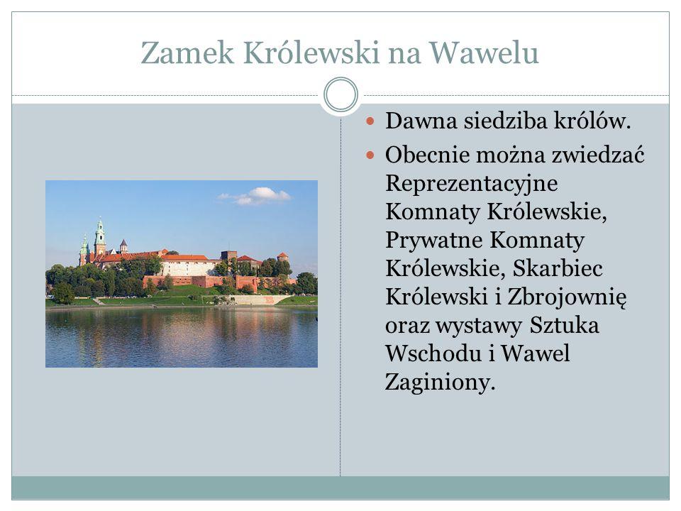 Zamek Królewski na Wawelu Dawna siedziba królów. Obecnie można zwiedzać Reprezentacyjne Komnaty Królewskie, Prywatne Komnaty Królewskie, Skarbiec Król