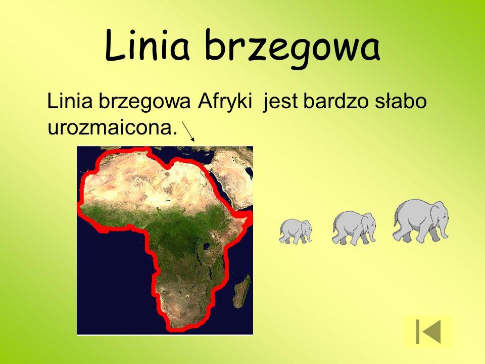Linia brzegowa Linia brzegowa Afryki jest bardzo słabo urozmaicona.