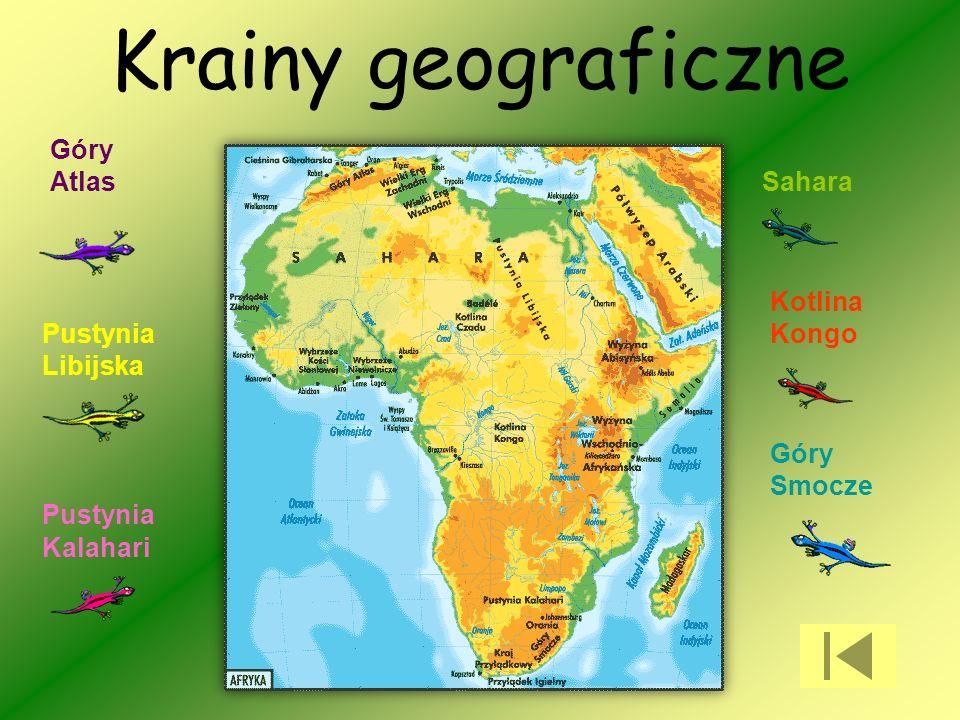 Krainy geograficzne Sahara Kotlina Kongo Góry Smocze Pustynia Kalahari Pustynia Libijska Góry Atlas