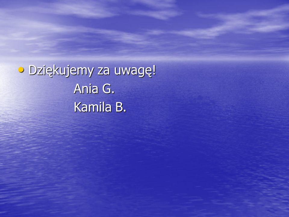 Dziękujemy za uwagę! Dziękujemy za uwagę! Ania G. Ania G. Kamila B. Kamila B.