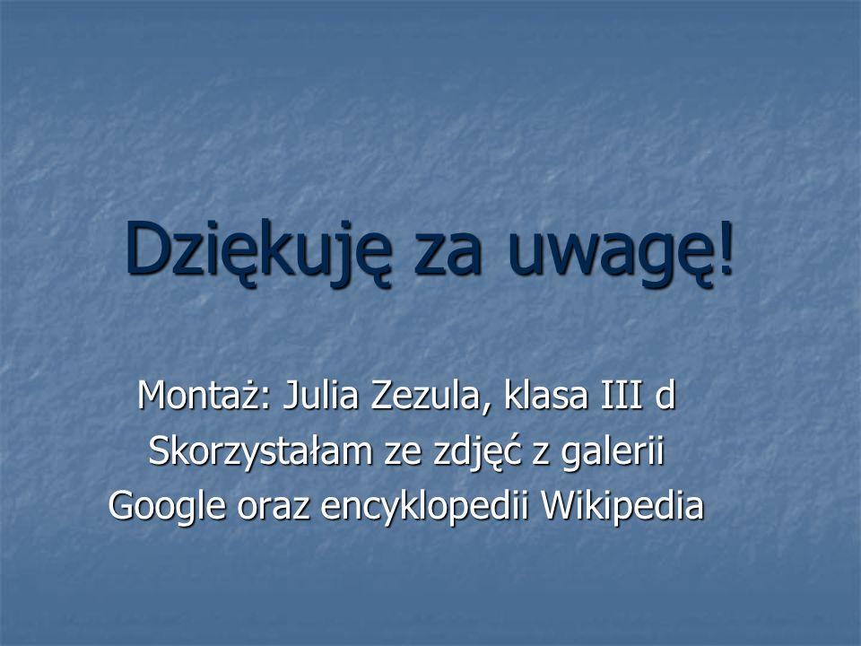 Dziękuję za uwagę! Montaż: Julia Zezula, klasa III d Skorzystałam ze zdjęć z galerii Google oraz encyklopedii Wikipedia