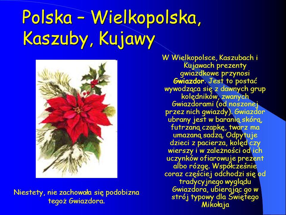 Polska – Wielkopolska, Kaszuby, Kujawy W Wielkopolsce, Kaszubach i Kujawach prezenty gwiazdkowe przynosi Gwiazdor. Jest to postać wywodząca się z dawn