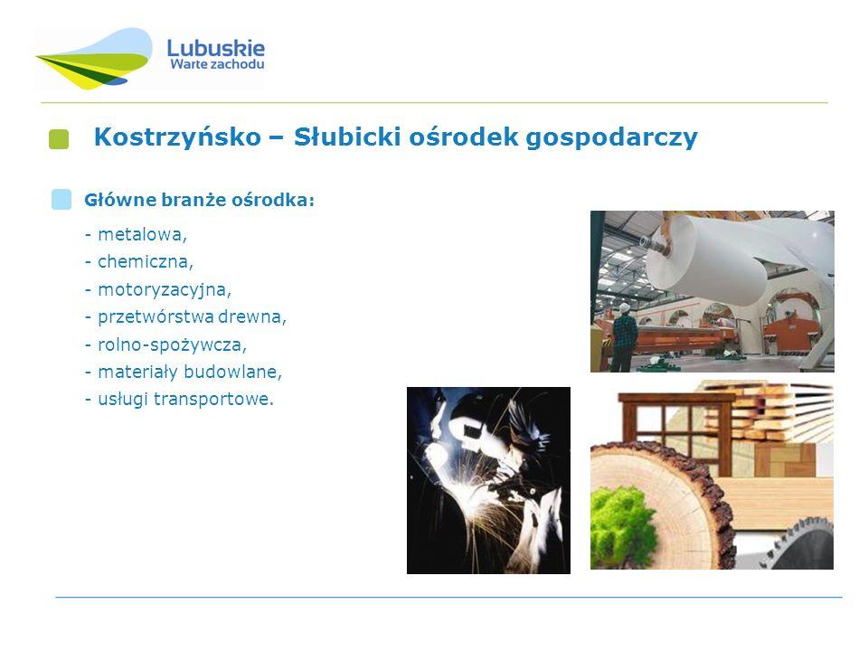 Kostrzyńsko – Słubicki ośrodek gospodarczy Główne branże ośrodka: - metalowa, - chemiczna, - motoryzacyjna, - przetwórstwa drewna, - rolno-spożywcza,