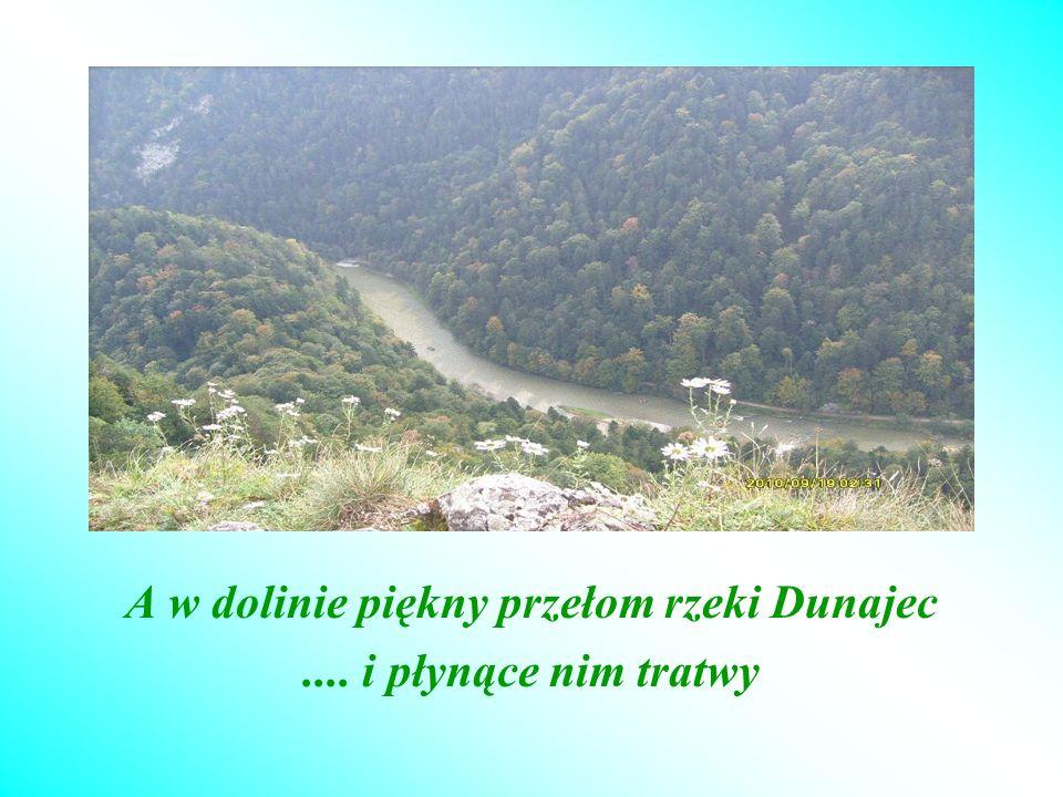 A w dolinie piękny przełom rzeki Dunajec.... i płynące nim tratwy