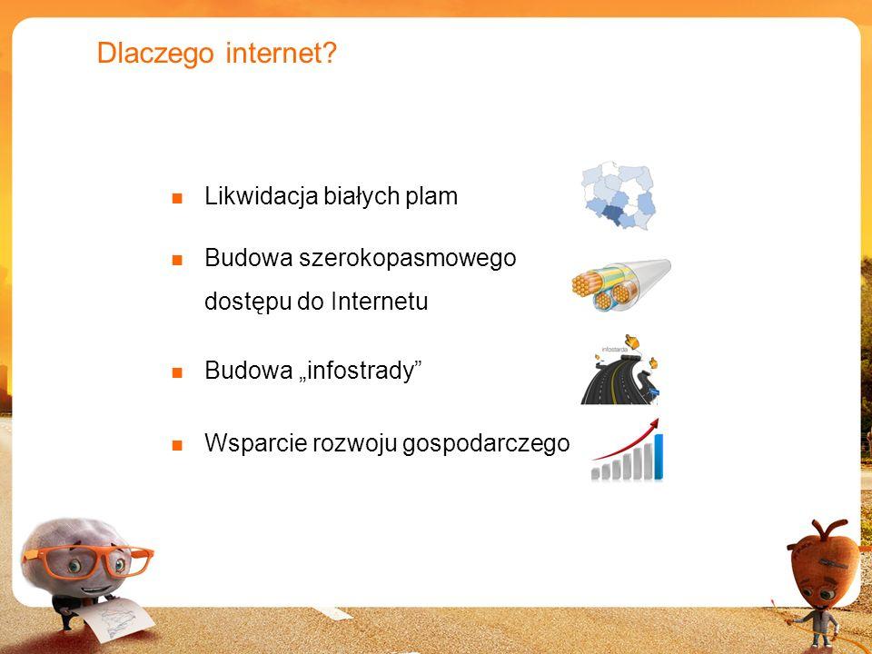 4 Dlaczego internet? Likwidacja białych plam Budowa szerokopasmowego dostępu do Internetu Budowa infostrady Wsparcie rozwoju gospodarczego