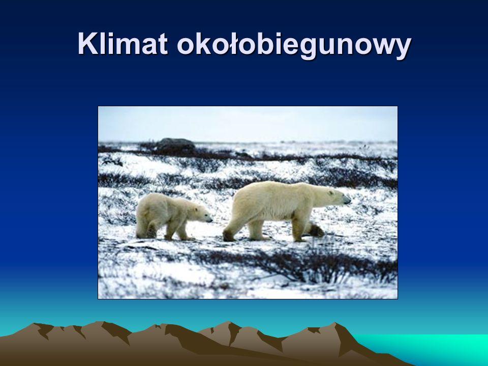 Klimat równikowy