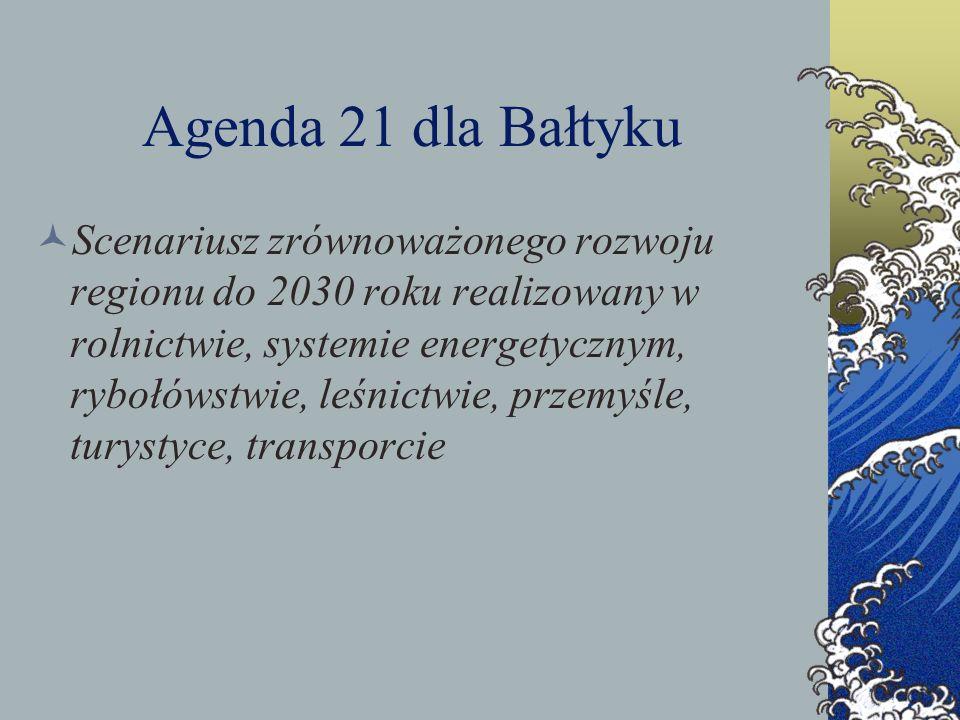 Agenda 21 dla Bałtyku Scenariusz zrównoważonego rozwoju regionu do 2030 roku realizowany w rolnictwie, systemie energetycznym, rybołówstwie, leśnictwi