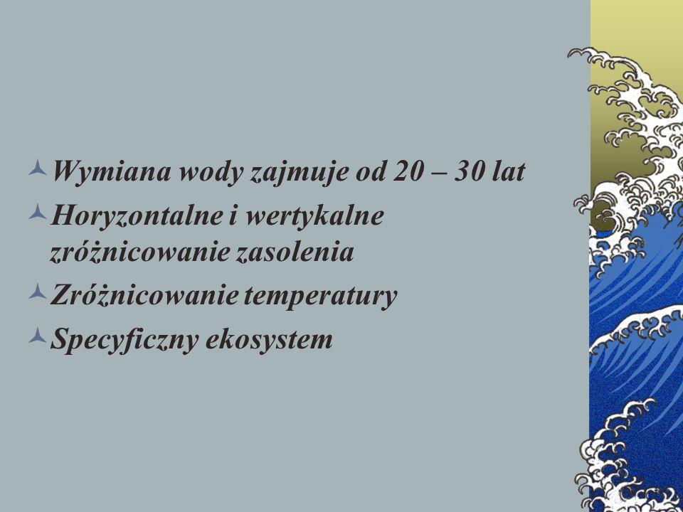 Wymiana wody zajmuje od 20 – 30 lat Horyzontalne i wertykalne zróżnicowanie zasolenia Zróżnicowanie temperatury Specyficzny ekosystem