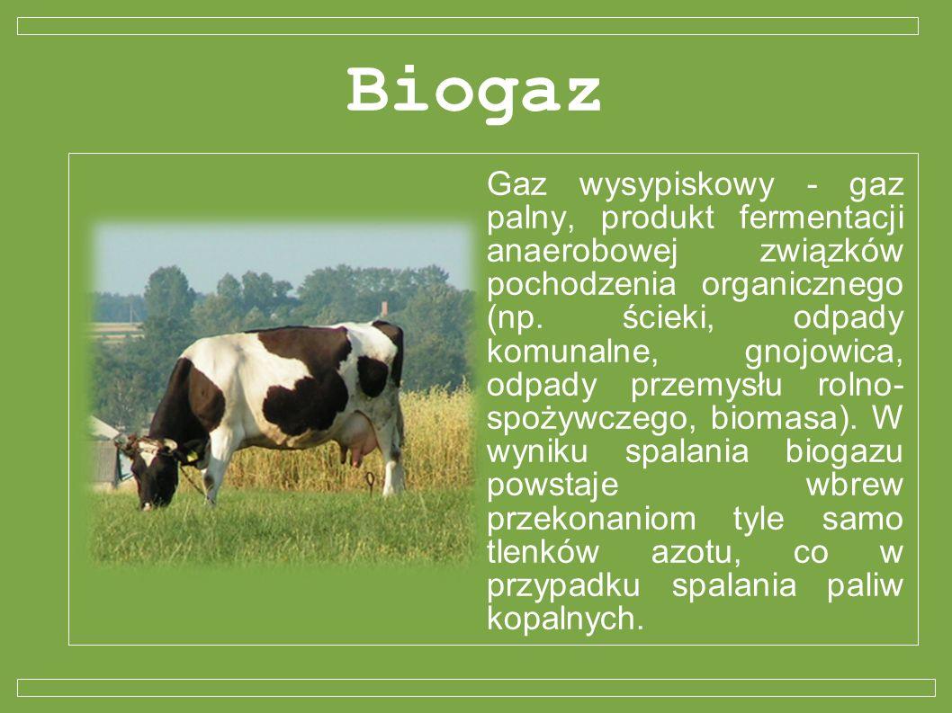 Biogaz Gaz wysypiskowy - gaz palny, produkt fermentacji anaerobowej związków pochodzenia organicznego (np. ścieki, odpady komunalne, gnojowica, odpady