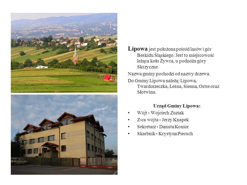 Lipowa jest położona pośród lasów i gór Beskidu Śląskiego. Jest to miejscowość leżąca koło Żywca, u podnóża góry Skrzyczne. Nazwa gminy pochodzi od na