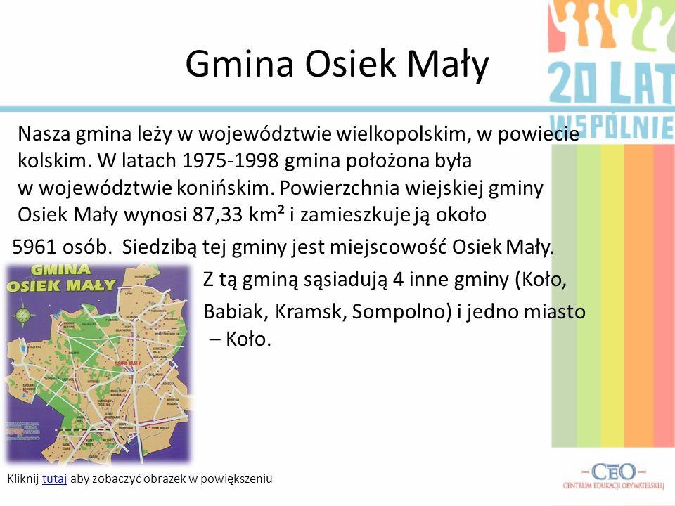 Nasza gmina leży w województwie wielkopolskim, w powiecie kolskim. W latach 1975-1998 gmina położona była w województwie konińskim. Powierzchnia wiejs