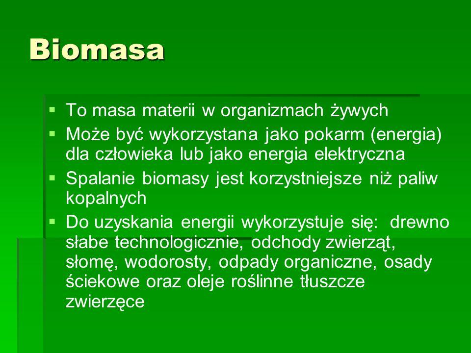 Biomasa To masa materii w organizmach żywych Może być wykorzystana jako pokarm (energia) dla człowieka lub jako energia elektryczna Spalanie biomasy j