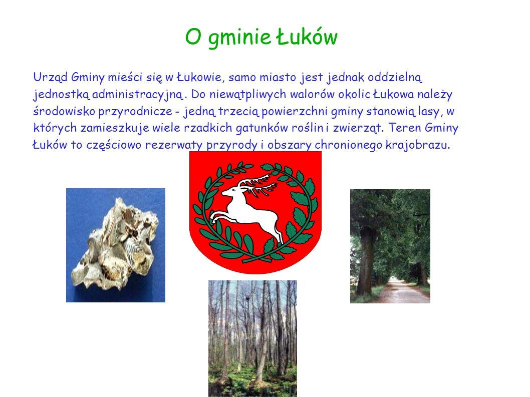 O gminie Łuków Urząd Gminy mieści się w Łukowie, samo miasto jest jednak oddzielną jednostką administracyjną. Do niewątpliwych walorów okolic Łukowa n