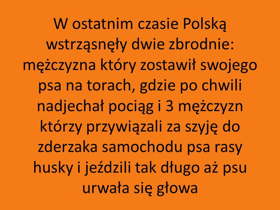 W ostatnim czasie Polską wstrząsnęły dwie zbrodnie: mężczyzna który zostawił swojego psa na torach, gdzie po chwili nadjechał pociąg i 3 mężczyzn któr