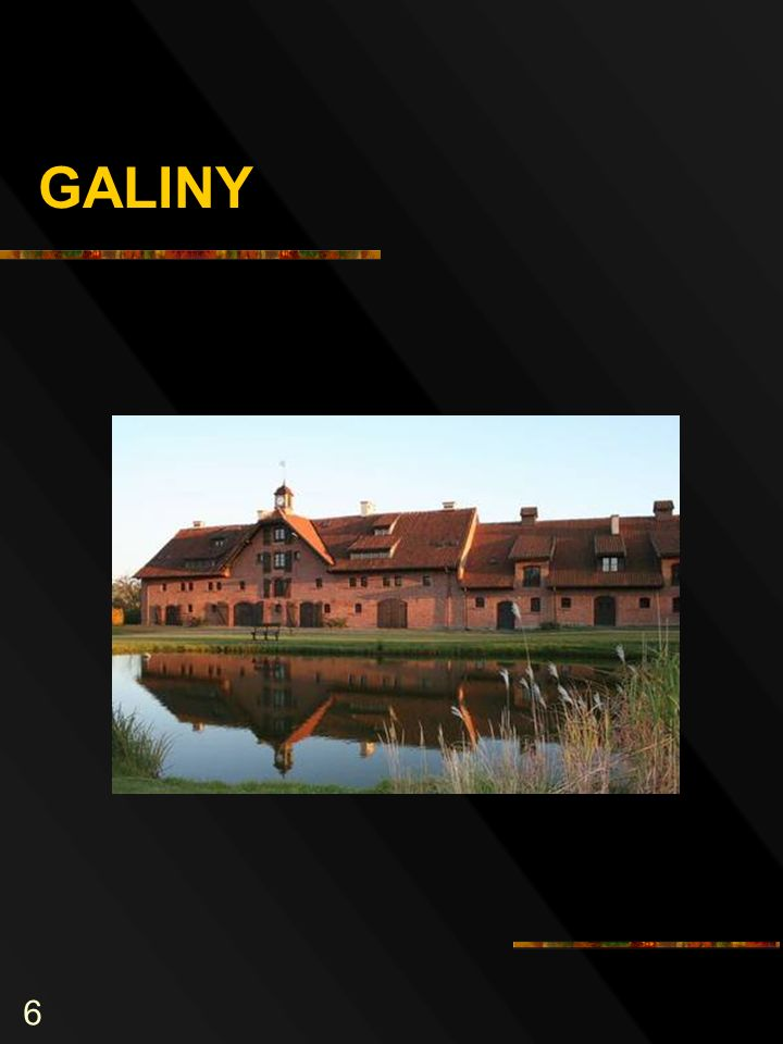 6 GALINY