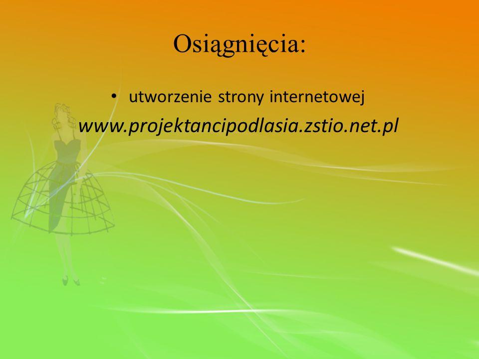 Osiągnięcia: utworzenie strony internetowej www.projektancipodlasia.zstio.net.pl