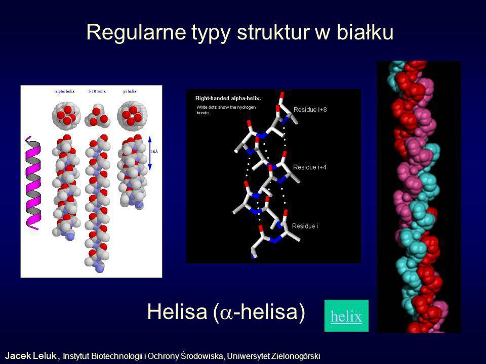 Regularne typy struktur w białku helix Helisa ( -helisa) Jacek Leluk, Instytut Biotechnologii i Ochrony Środowiska, Uniwersytet Zielonogórski