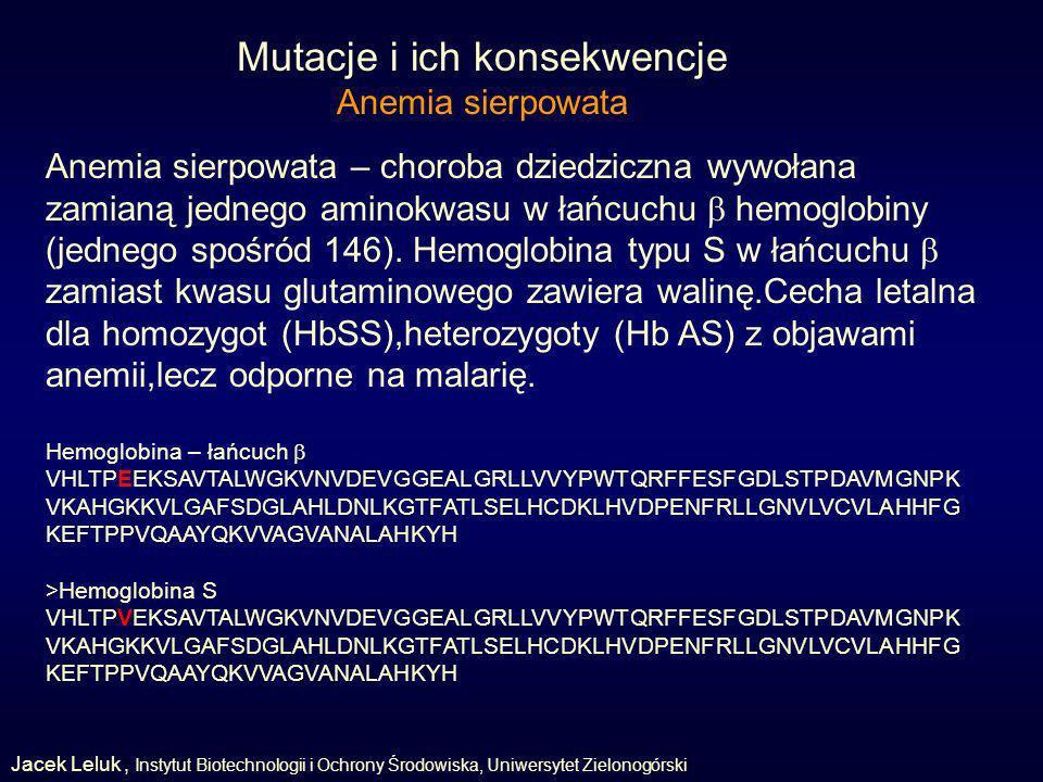 Mutacje i ich konsekwencje Anemia sierpowata Anemia sierpowata – choroba dziedziczna wywołana zamianą jednego aminokwasu w łańcuchu hemoglobiny (jednego spośród 146).