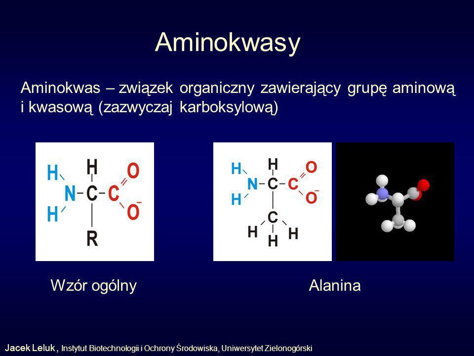 Aminokwasy Aminokwas – związek organiczny zawierający grupę aminową i kwasową (zazwyczaj karboksylową) AlaninaWzór ogólny Jacek Leluk, Instytut Biotechnologii i Ochrony Środowiska, Uniwersytet Zielonogórski