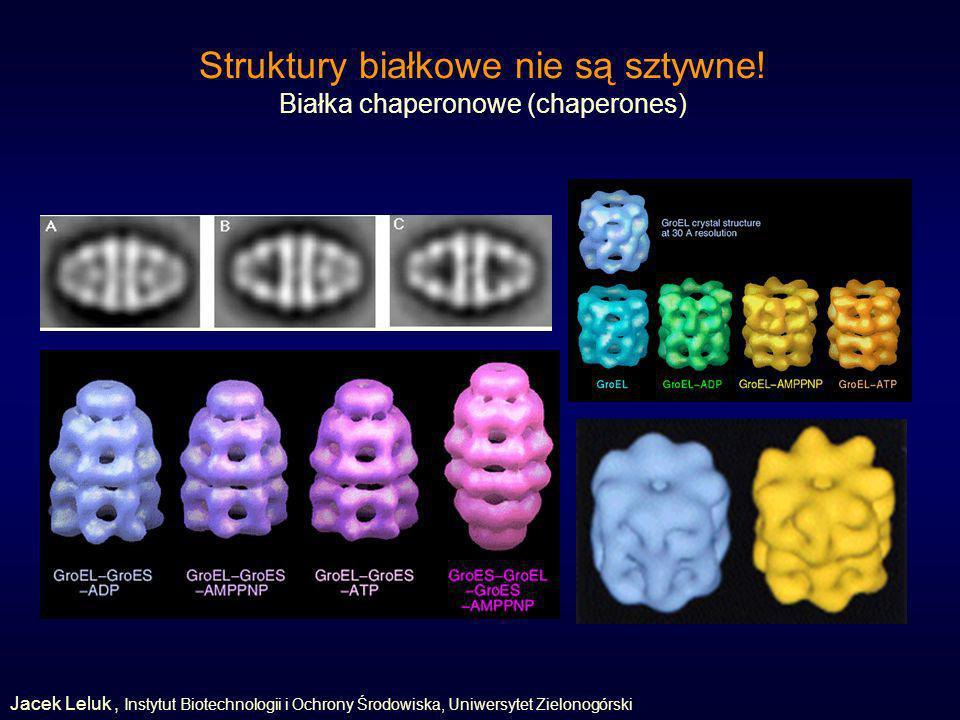 Struktury białkowe nie są sztywne.
