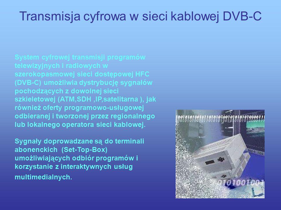 Transmisja cyfrowa drogą naziemną DVB-T SCHEMAT BLOKOWY STRUKTURY SYSTEMU DVB-T