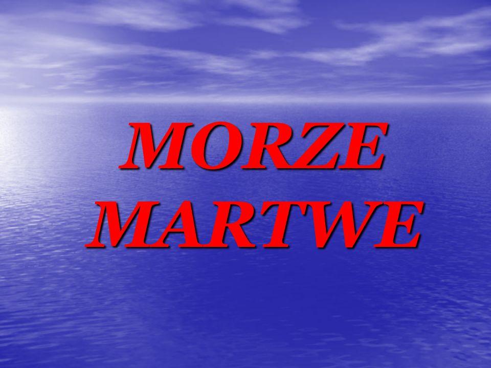 MORZE MARTWE MORZE MARTWE