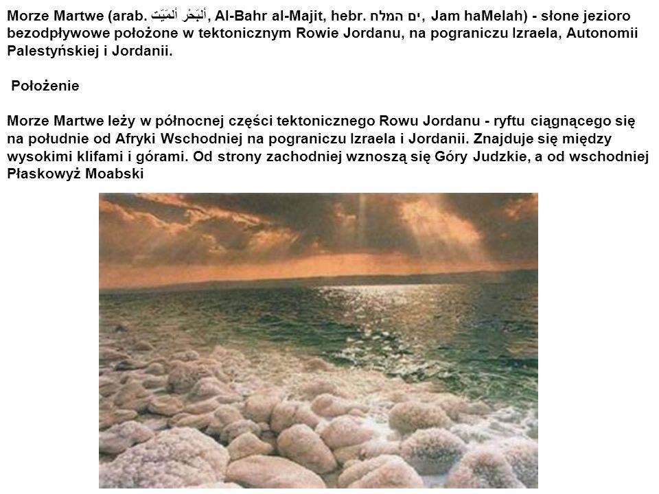 Położenie Morze Martwe leży w północnej części tektonicznego Rowu Jordanu - ryftu ciągnącego się na południe od Afryki Wschodniej na pograniczu Izraela i Jordanii.