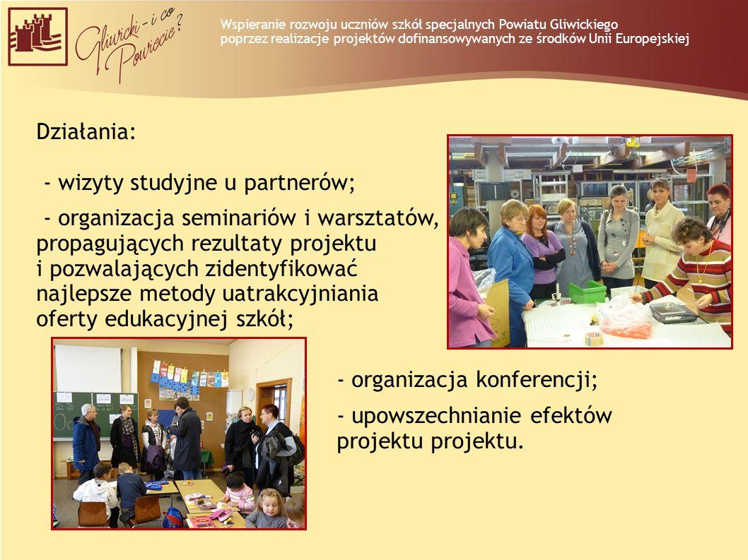 Działania: - wizyty studyjne u partnerów; - organizacja seminariów i warsztatów, propagujących rezultaty projektu i pozwalających zidentyfikować najle