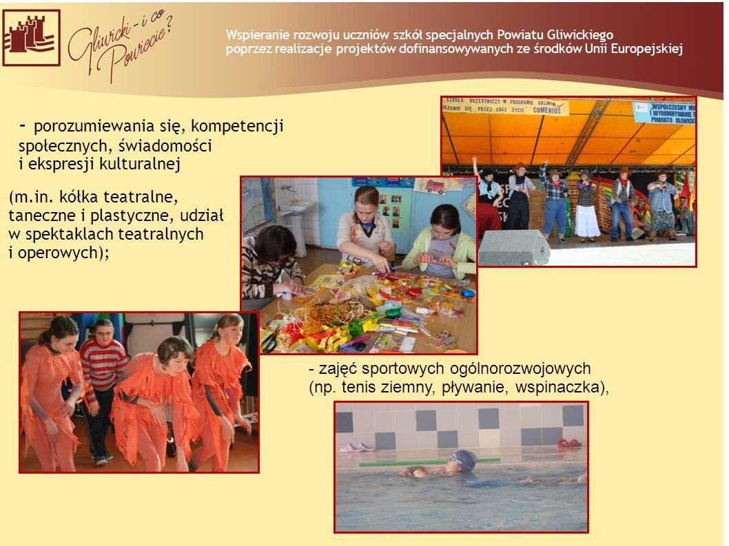 - porozumiewania się, kompetencji społecznych, świadomości i ekspresji kulturalnej (m.in. kółka teatralne, taneczne i plastyczne, udział w spektaklach