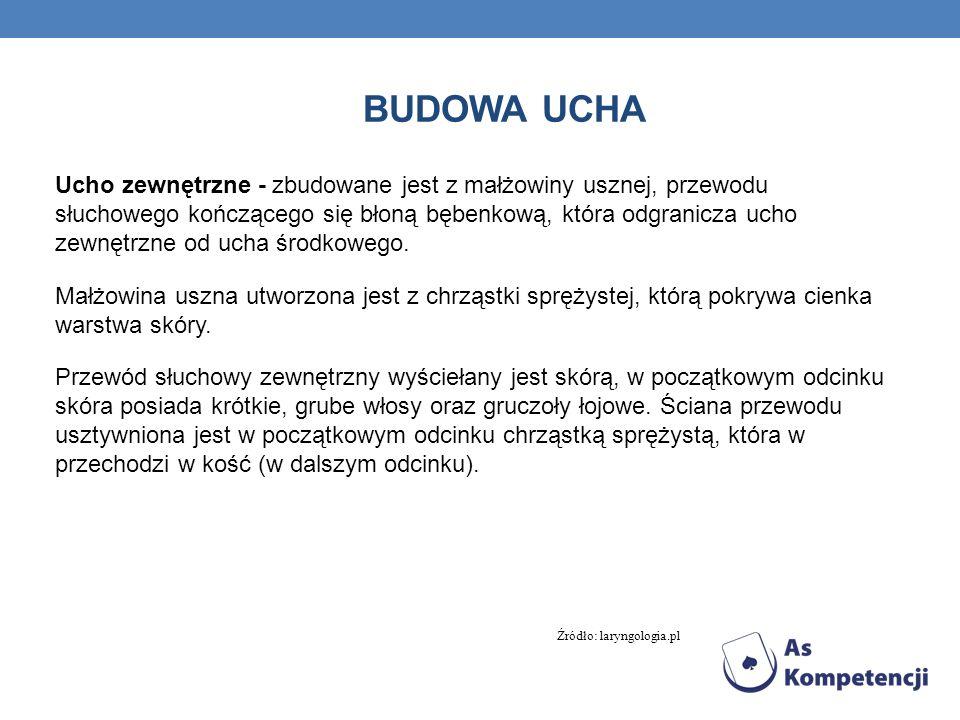 BUDOWA UCHA Ucho środkowe - utworzone jest z systemu jam powietrznych: jamy bębenkowej (spłaszczona przestrzeń wypełniona powietrzem), w której znajdują się trzy kosteczki słuchowe (młoteczek, kowadełko, strzemiączko), jamy sutkowej wyposażonej w komórki powietrzne wyrostka sutkowego oraz trąbki słuchowej (Eustachiusza).