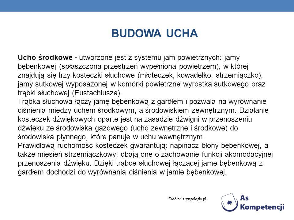 BUDOWA UCHA Ucho wewnętrzne - w jego skład wchodzi błędnik oraz nerw statyczno- słuchowy.