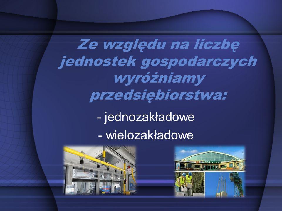 Przedsiębiorstwo prywatne podmiot gospodarczy, którego celem jest dostarczanie dóbr i usług potencjalnym nabywcom oraz maksymalizacja zysku.