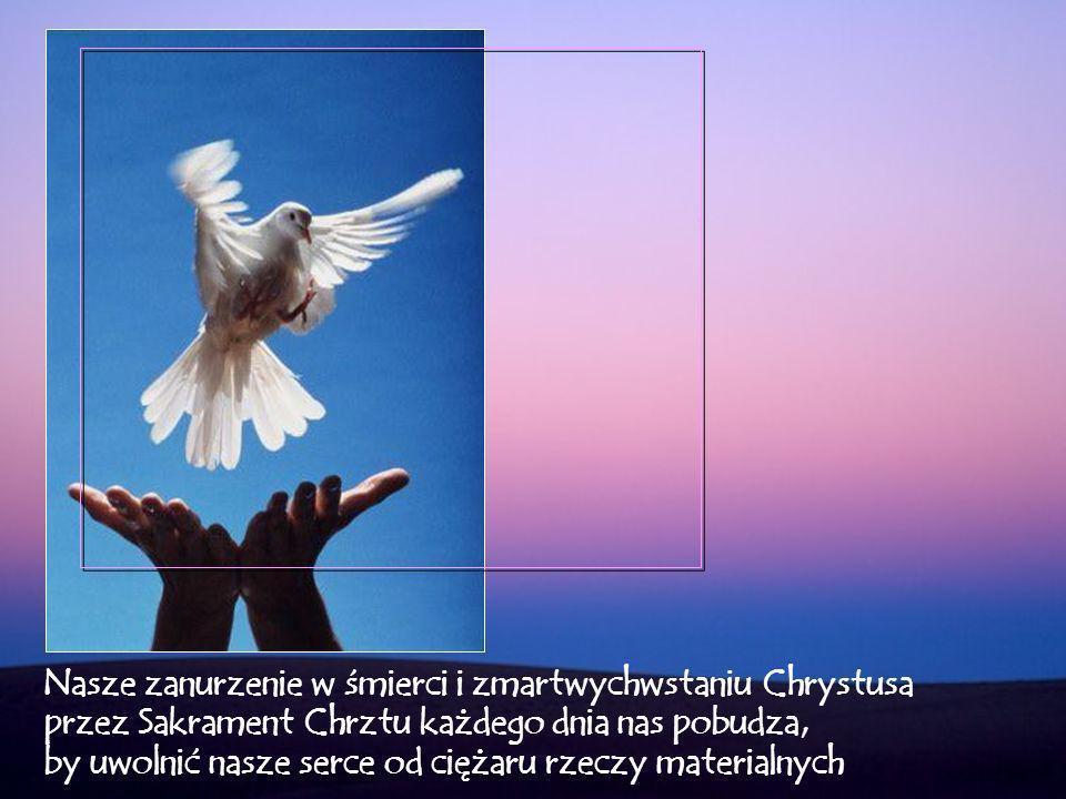 …odnawiając przyrzeczenia chrzcielne, ponownie wyznajemy, że Chrystus jest Panem naszego życia, tego życia, które Bóg nam podarował, gdy zostaliśmy odrodzeni z wody i z Ducha Świętego