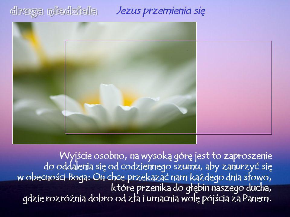 W modlitwie znajdujemy czas dla Boga, by poznać, że Jego słowa nie przeminą