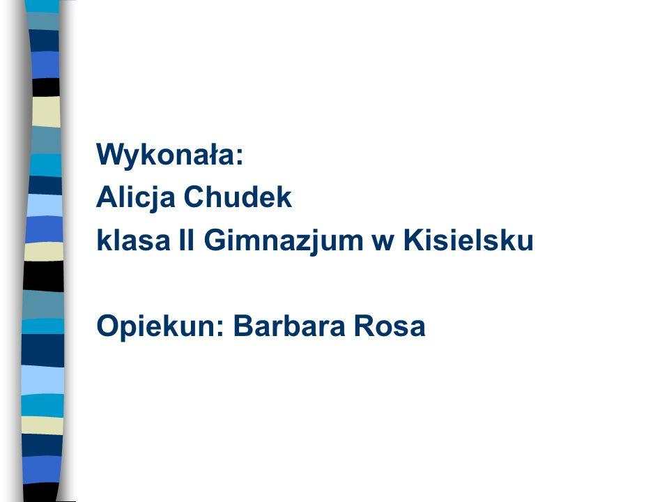 Bibliografia http://pl.wikipedia.org/wiki/Ewa_ Nowak http://pl.wikipedia.org/wiki/Ewa_ Nowak http://przestrzenkultury.blogspot.com/2009/06/yellow-baha