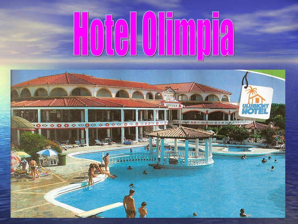 Hotel istnieje od 5 lat.Właścicielem jest Mateusz Rajewicz.