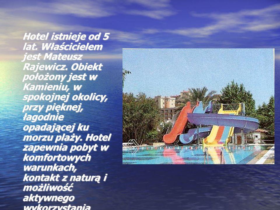 Hotel istnieje od 5 lat. Właścicielem jest Mateusz Rajewicz. Obiekt położony jest w Kamieniu, w spokojnej okolicy, przy pięknej, łagodnie opadającej k