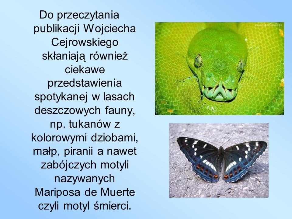 Do przeczytania publikacji Wojciecha Cejrowskiego skłaniają również ciekawe przedstawienia spotykanej w lasach deszczowych fauny, np. tukanów z koloro
