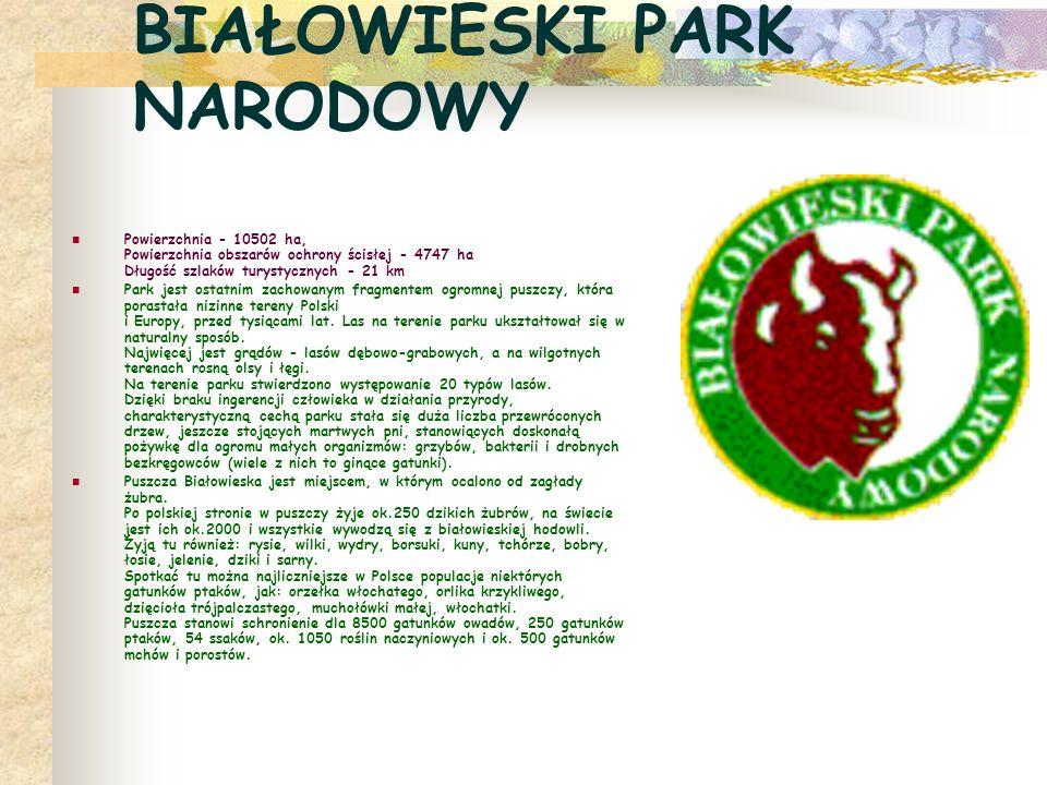 WIGIERSKI PARK NARODOWY Powierzchnia - 15085 ha Powierzchnia obszarów ochrony ścisłej - 380 ha Długość szlaków turystycznych - 237 km, z możliwością pływania kajakami i łodziami wiosłowymi po terenie jeziora Wigry Park zajmuje obszar krajobrazu polodowcowego - Suwalszczyzny i największego obszaru leśnego - Puszczy Augustowskiej.