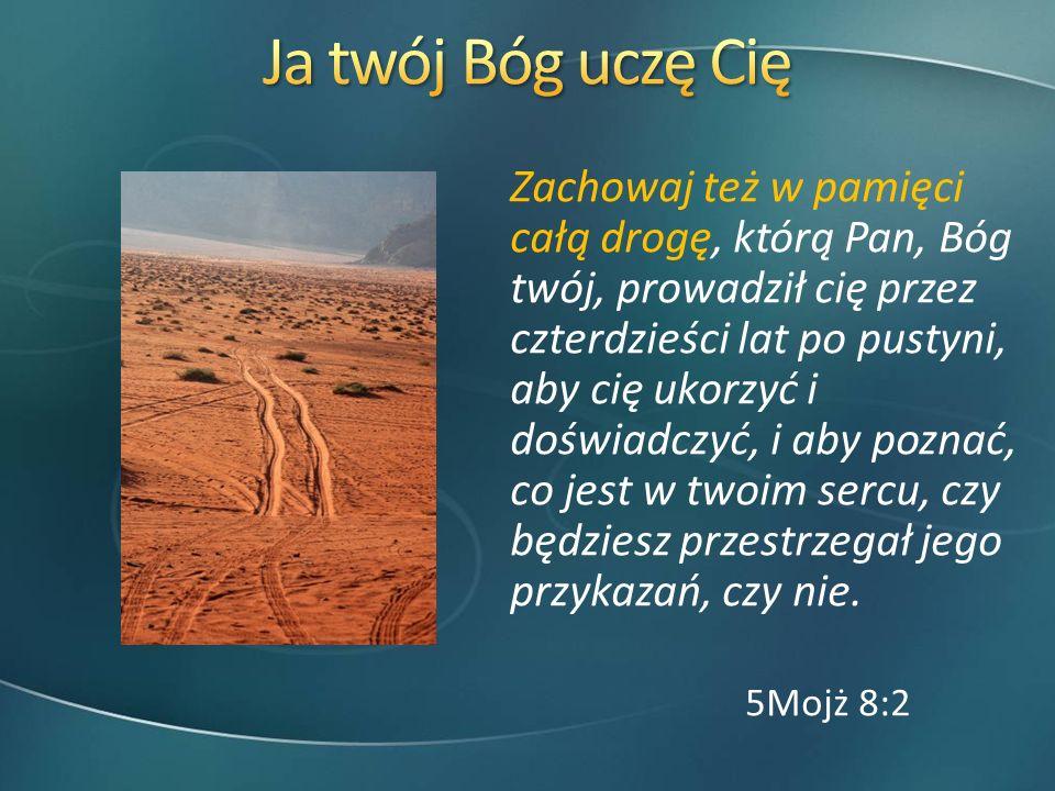 Zachowaj też w pamięci całą drogę, którą Pan, Bóg twój, prowadził cię przez czterdzieści lat po pustyni, aby cię ukorzyć i doświadczyć, i aby poznać,