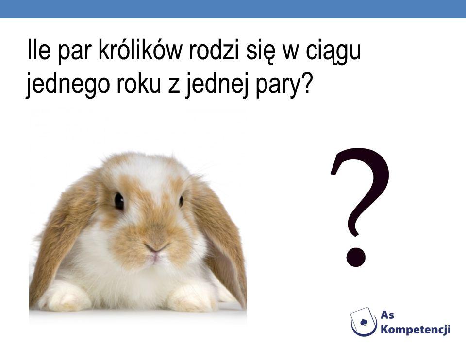 Ile par królików rodzi się w ciągu jednego roku z jednej pary?