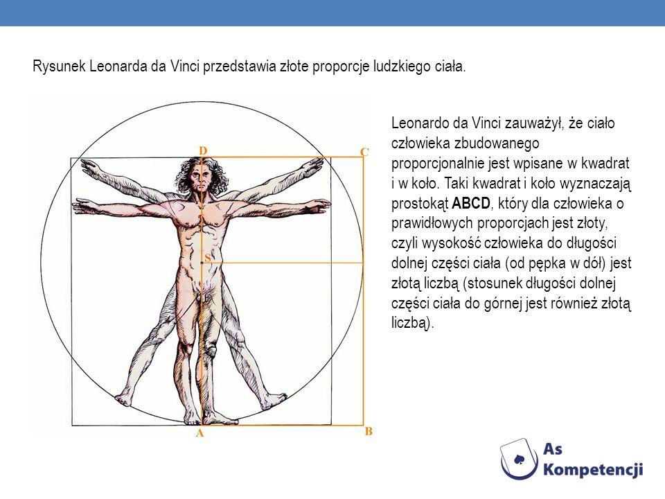 Rysunek Leonarda da Vinci przedstawia złote proporcje ludzkiego ciała. Leonardo da Vinci zauważył, że ciało człowieka zbudowanego proporcjonalnie jest