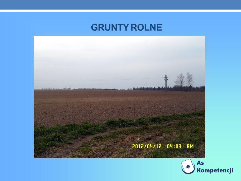 GRUNTY ROLNE