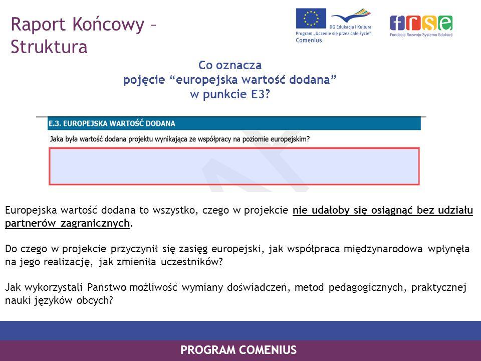 PROGRAM COMENIUS Europejska wartość dodana to wszystko, czego w projekcie nie udałoby się osiągnąć bez udziału partnerów zagranicznych. Do czego w pro