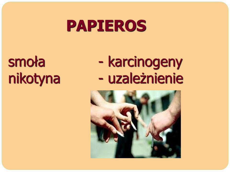 PAPIEROS smoła - karcinogeny nikotyna - uzależnienie PAPIEROS smoła - karcinogeny nikotyna - uzależnienie