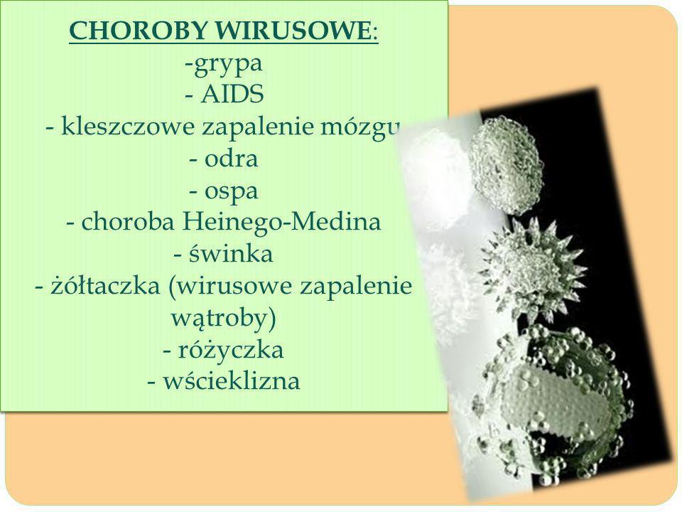 CHOROBY WIRUSOWE : -grypa - AIDS - kleszczowe zapalenie mózgu - odra - ospa - choroba Heinego-Medina - świnka - żółtaczka (wirusowe zapalenie wątroby) - różyczka - wścieklizna CHOROBY WIRUSOWE : -grypa - AIDS - kleszczowe zapalenie mózgu - odra - ospa - choroba Heinego-Medina - świnka - żółtaczka (wirusowe zapalenie wątroby) - różyczka - wścieklizna