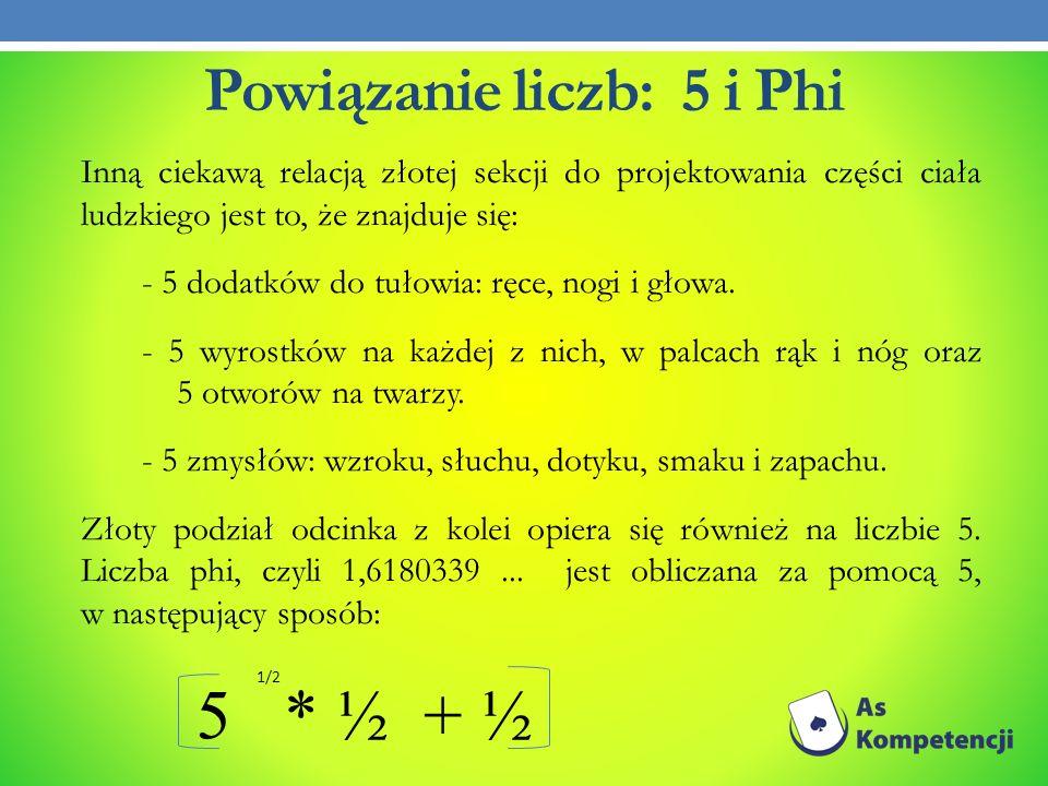 Powiązanie liczb: 5 i Phi Inną ciekawą relacją złotej sekcji do projektowania części ciała ludzkiego jest to, że znajduje się: - 5 dodatków do tułowia