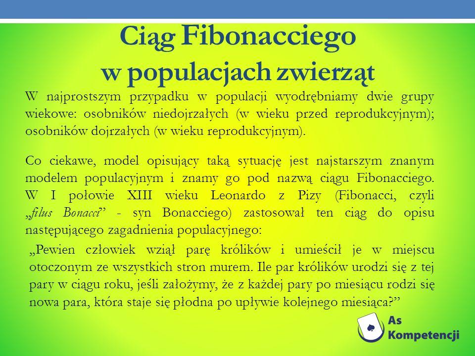 Ciąg Fibonacciego w populacjach zwierząt W najprostszym przypadku w populacji wyodrębniamy dwie grupy wiekowe: osobników niedojrzałych (w wieku przed